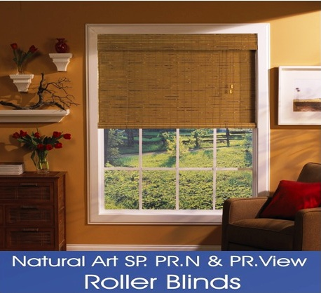 ROLLER BLIND SERIES PR N PR VIEW