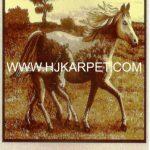 KARPET SAFARI AFRICA